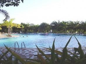 grass_pool